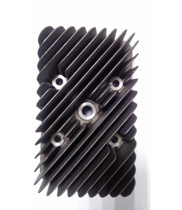 Головка цилиндра Rotax 550.